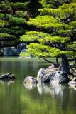 Giardino giapponese di zen nel parco del tempio di kinkakuji, Kyoto Immagini Stock Libere da Diritti