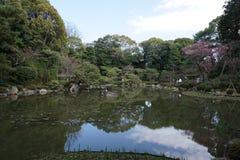 Giardino giapponese in Heian-jingu, Kyoto, Giappone Fotografie Stock