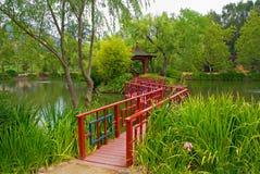 Giardino giapponese in Napa Valley immagini stock