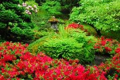 Giardino giapponese nei giardini del butchart Fotografia Stock