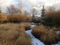 Giardino giapponese nell'orario invernale Fotografia Stock Libera da Diritti