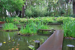Giardino giapponese nell'Uruguay, Montevideo Immagine Stock