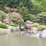 Giardino giapponese pittoresco Fotografie Stock Libere da Diritti