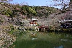 Giardino giapponese in tempio di Daigoji, Kyoto Immagine Stock