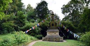 Giardino himalayano alla Camera di Harewood, Leeds, West Yorkshire, Regno Unito Fotografie Stock Libere da Diritti