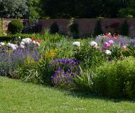 Giardino inglese del cottage con prato inglese in priorità alta, letto di fiore fertile e parete nel fondo con lo spazio della co immagini stock