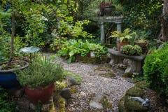 Giardino isolato Fotografia Stock Libera da Diritti