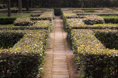 Giardino italiano Immagini Stock Libere da Diritti