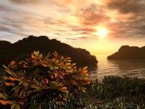 Giardino litoraneo al tramonto fotografia stock libera da diritti