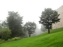 Giardino nebbioso Immagini Stock