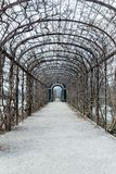 Giardino nel palazzo di belvedere di Vienna all'inverno fotografia stock