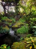 Giardino nella natura Fotografia Stock