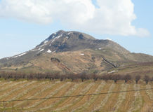 Giardino nelle montagne Fotografia Stock