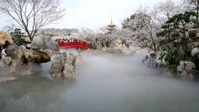 Giardino orientale del fiore di ciliegia del lago wuhan archivi video