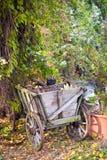 Giardino ornamentale selvaggio fotografia stock
