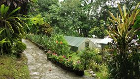 Giardino orticolo Sikkim India fotografia stock libera da diritti