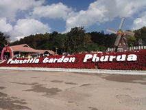 Giardino in Phurua Fotografia Stock Libera da Diritti