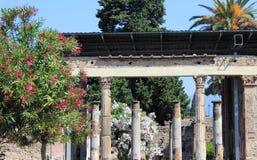 Giardino a Pompeii Fotografia Stock Libera da Diritti