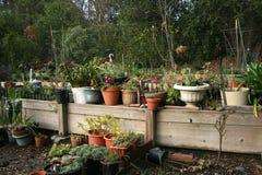 Giardino privato Fotografia Stock