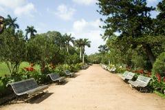 Giardino pubblico del museo, Kerala immagine stock