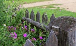Giardino rurale Immagini Stock Libere da Diritti