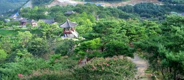 Giardino (Seoul, Corea) fotografie stock