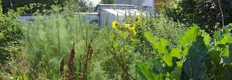 Giardino spettinato degli agricoltori Immagini Stock Libere da Diritti