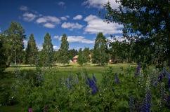 Giardino svedese Immagini Stock