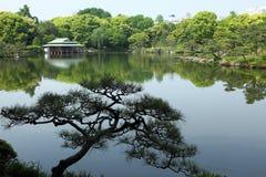 Giardino tradizionale giapponese Fotografia Stock