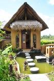 Giardino tropicale Fotografia Stock