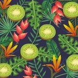 Giardino tropicale con il kiwi Fotografie Stock
