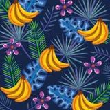 Giardino tropicale con il mazzo della banana Fotografia Stock