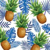 Giardino tropicale con l'ananas Immagini Stock Libere da Diritti