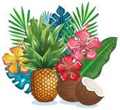 Giardino tropicale con l'ananas e la noce di cocco Fotografia Stock