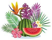 Giardino tropicale con l'anguria Immagini Stock Libere da Diritti
