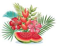 Giardino tropicale con l'anguria Fotografia Stock Libera da Diritti