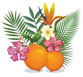 Giardino tropicale con l'arancia Fotografia Stock Libera da Diritti