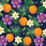 Giardino tropicale con l'arancia Fotografie Stock