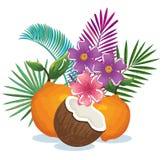 Giardino tropicale con l'arancia e la noce di cocco Immagine Stock Libera da Diritti