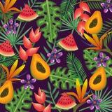 Giardino tropicale con la papaia e l'anguria Immagine Stock Libera da Diritti