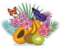 Giardino tropicale con la papaia ed il kiwi Fotografia Stock