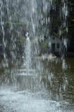 Giardino tropicale del palazzo di Monte, Madera Immagini Stock Libere da Diritti