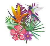 Giardino tropicale ed esotico con il colibrì Fotografia Stock Libera da Diritti