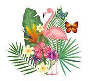 Giardino tropicale ed esotico con il fiammingo Immagine Stock Libera da Diritti