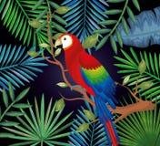 Giardino tropicale ed esotico con il pappagallo Fotografia Stock