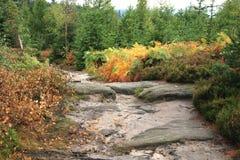Giardino variopinto delle montagne di autunno. Immagini Stock Libere da Diritti