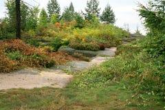 Giardino variopinto delle montagne di autunno. Fotografia Stock Libera da Diritti