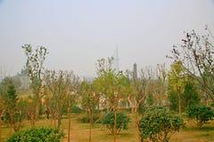 Giardino verde dell'Expo a Zhengzhou Immagini Stock
