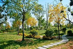Giardino verde dell'Expo a Zhengzhou Immagine Stock