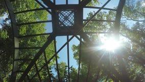 Giardino verde di estate delle stanze archivi video